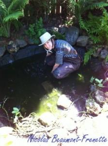 Caro dans étang