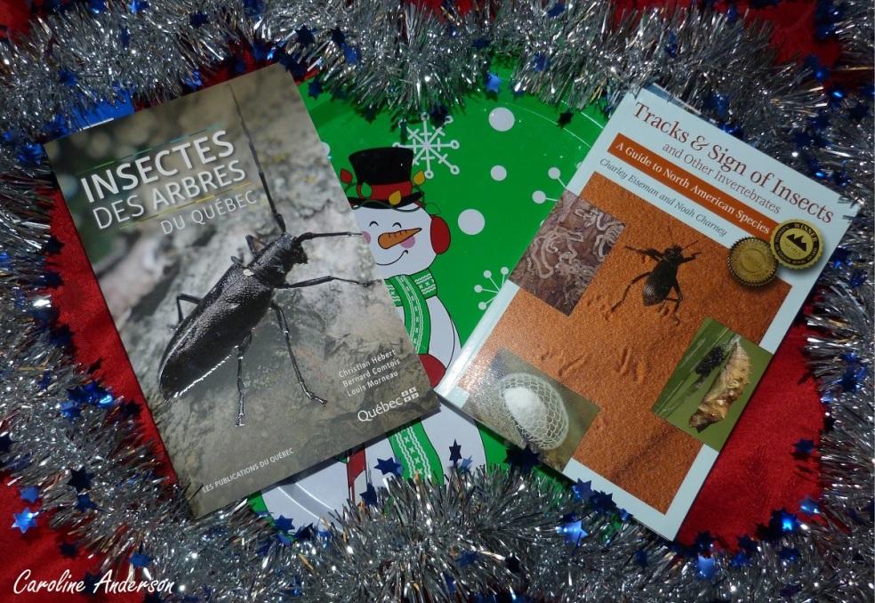 Deux beaux livres à offrir (ou à s'offrir) pour le temps des fêtes!