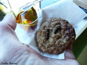 Jujubes aux grillons et biscuit aux grillons