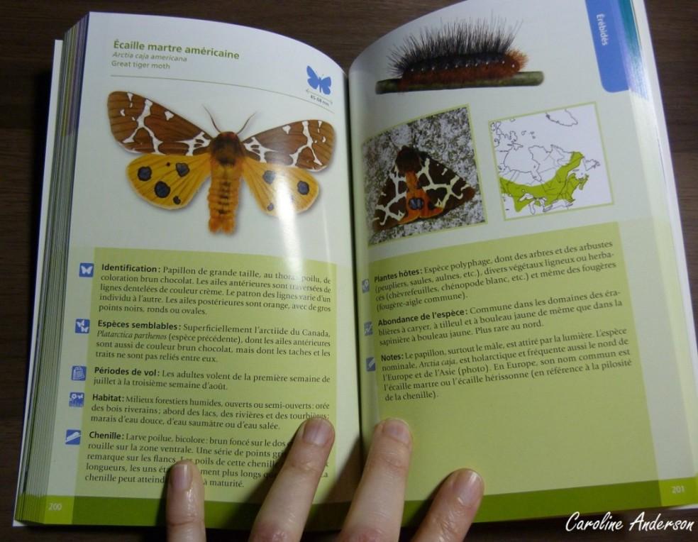 Exemple de planche retrouvée dans le livre